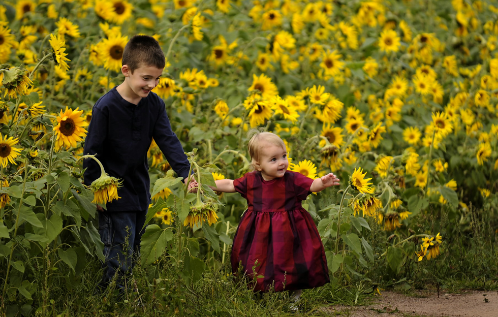 Sunflower-Family-Portrait