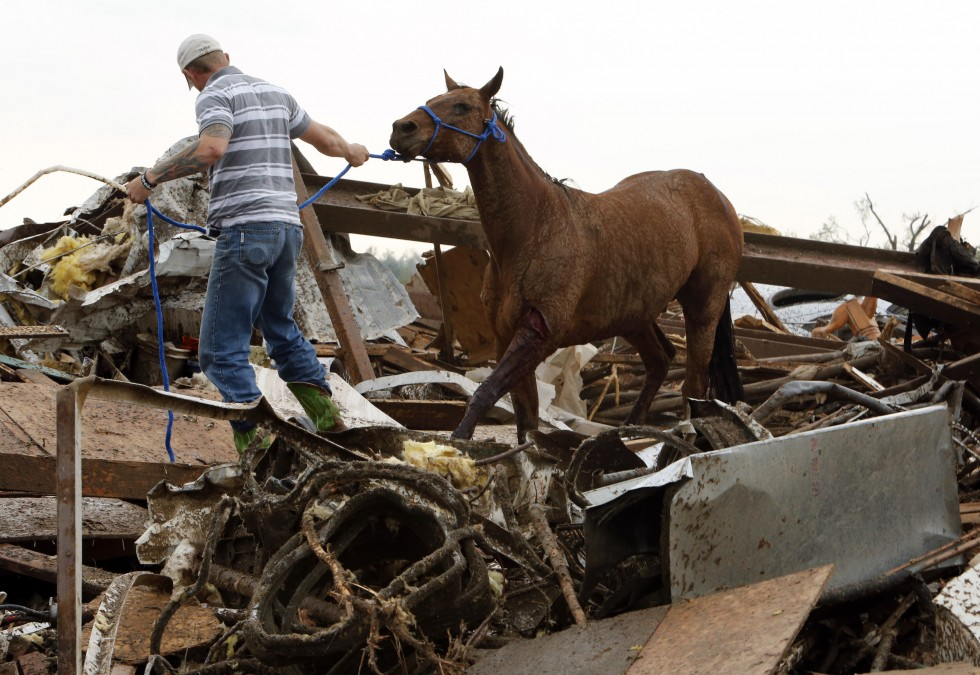 5/20/2013 -- Rescuers recover a horse from the remains of a day care center and destroyed barns, Monday, May 20, 2013  in Moore, Okla.(The Oklahoman, Steve Sisney)