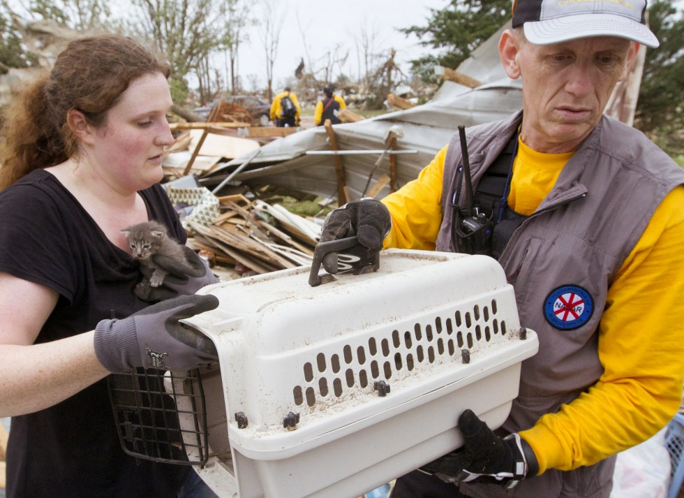 5/20/2013 -- A kitten is rescued from the tornado wreckage in Shawnee, Oklahoma, Monday, May 20, 2013. (Marcus DiPaola/Xinhua via Zuma Press/MCT)