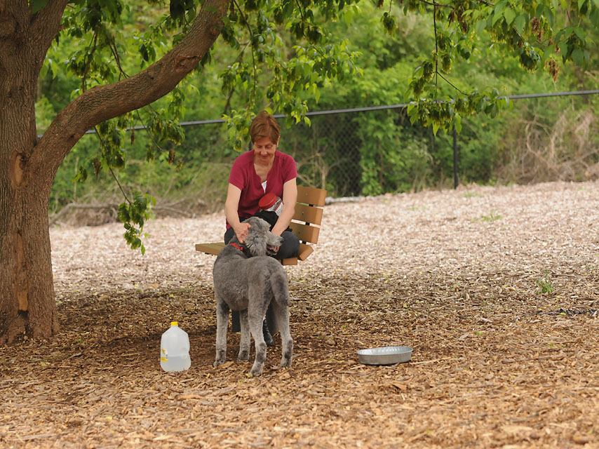 Linda Holter and her dog, Sylvia at the Enfield Dog Park
