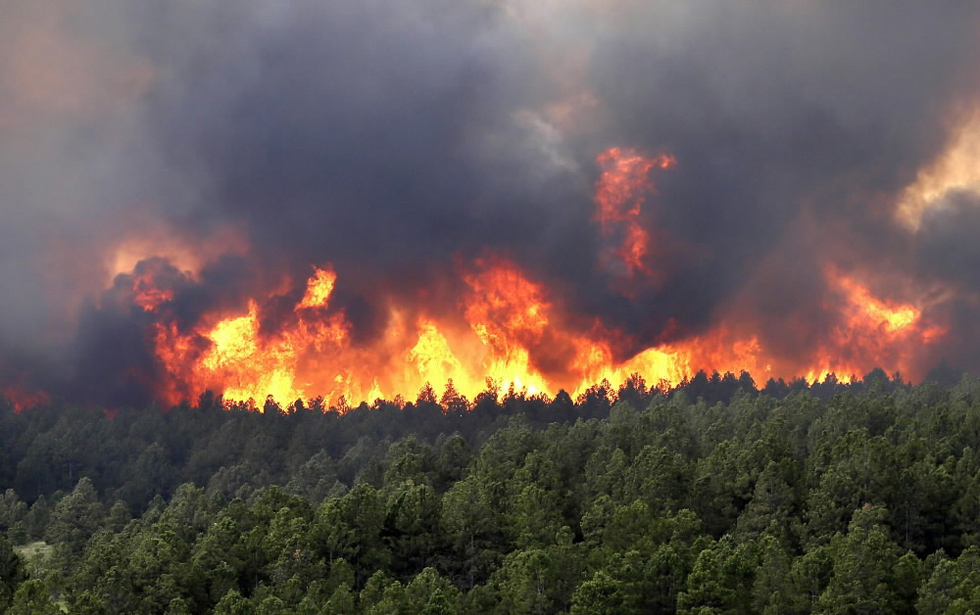 A wildfire rages on in Black Forest, Colorado, as fire crews battled the wind-whipped fire that burned at least 90 homes near Colorado Springs. Another blaze shut one of the state's top tourist attractions and forced the evacuation of more than 900 inmates from a prison. REUTERS/Rick Wilking
