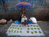 A vegetable vendor shields himself from the rain while selling his wares at a market during the monsoon rains in Mumbai, India, June 18, 2013. The rains are at least twice as heavy as usual in northwest and central India, as the June-September monsoon spreads north, covering the entire country a month earlier than usual. REUTERS/Vivek Prakash