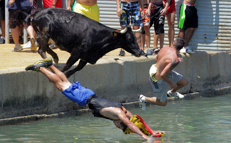 Runners dive into the harbor,  followed closely by a bull, during the annual Running of the Bulls in in the historic neighborhoods of Pamplona, Spain. AFP PHOTO/JOSE JORDAN/AFP/Getty Images