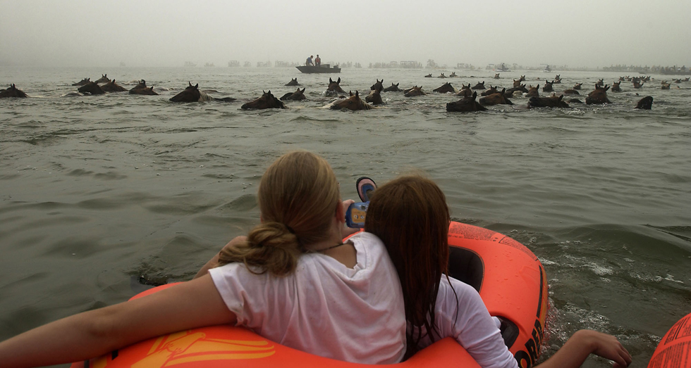 Girls on an inflatable raft get a close look at the ponies crossing the Assateague Channel. The ponies were later herded through town to a corral on the carnival grounds, where they will be sold at auction. (AP Photo/The Virginian-Pilot, Yoon S. Byun)