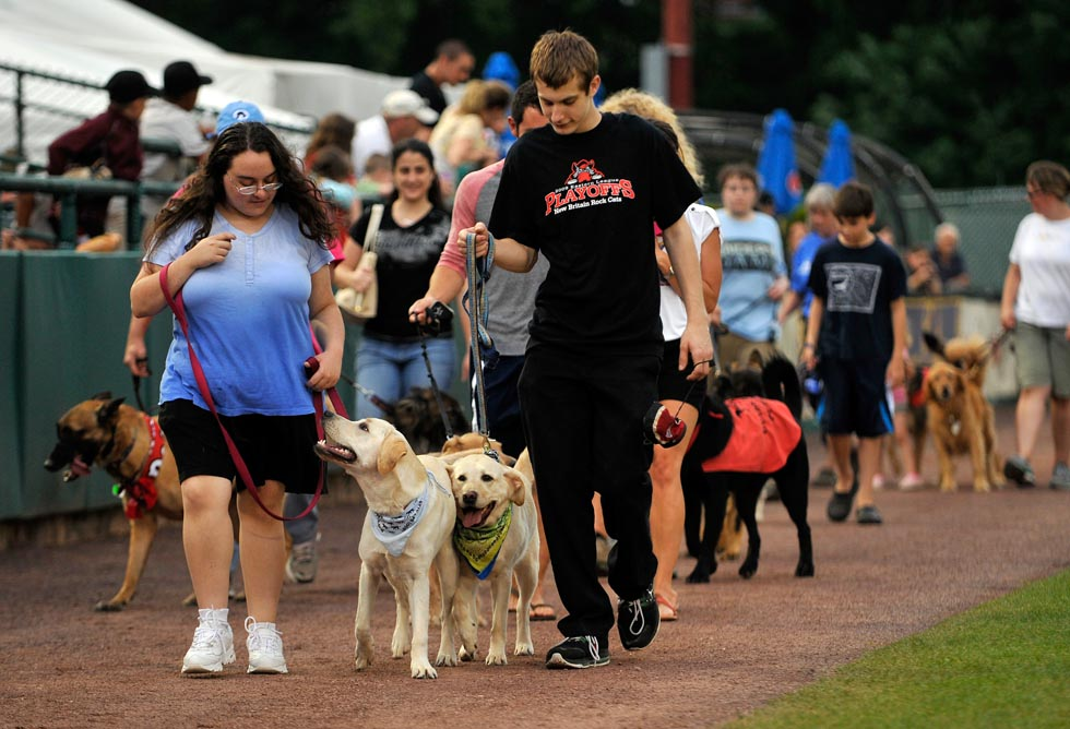 (L to R)  Briana Monsky walks Fawn, a guide dog in training, while Christopher Solberg walks Layla, a released guide dog, during the doggie parade portion of the event. Both Monsky and Solberg are from Naugatuck and are with Guiding Eyes for the Blind, an internationally accredited, nonprofit guide dog school.