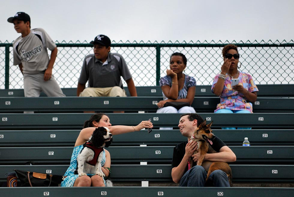 Elizabeth Kane shows her boyfriend Ben Smith a photo she just took of him and his dog Arya, an Australian Cattle dog, as the doggie parade circled the field between games of the double-header. Smith and Kane are from Kensington.