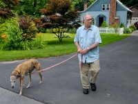 Paul is able to get out of the house for an hour or so each day. He and Ben take a short walk in the morning and then drive to the Bark Park later in the day.