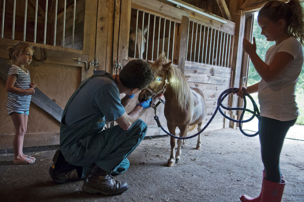 2013.07.08 - Mansfield, CT - Ruby Hastedt (L), 5, and her sister Rose Hastedt, 7, watch as Veterinarian Dennis Thibeault performs a routine examination on their horse Ginger. Photograph by Mark Mirko | mmirko@courant.com