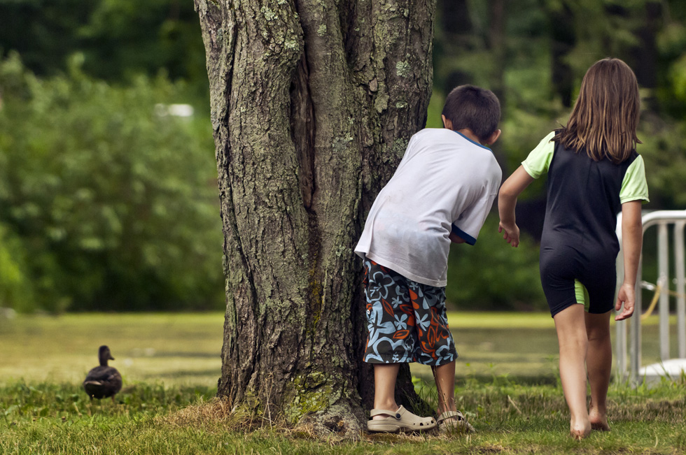 2013.07.23 - West Hartford, CT - Mary Patrisko, 7, of New Britain, and Jonmichael Duran (cq), 7, of Newington, peek around a tree in Wolcott Park while trying to get a close look at a duckling wandering the area near the park's pond. Photograph by Mark Mirko | mmirko@courant.com