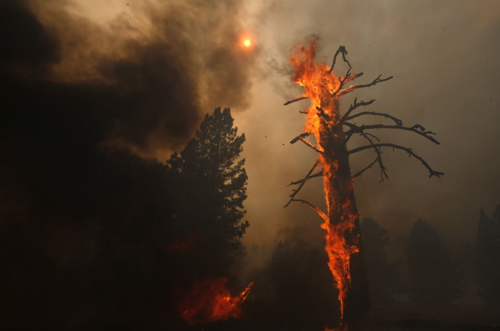 Smoke and flames from the Rim fire fill the sky above near Yosemite National Park,  (Don Bartletti/Los Angeles Times/MCT)