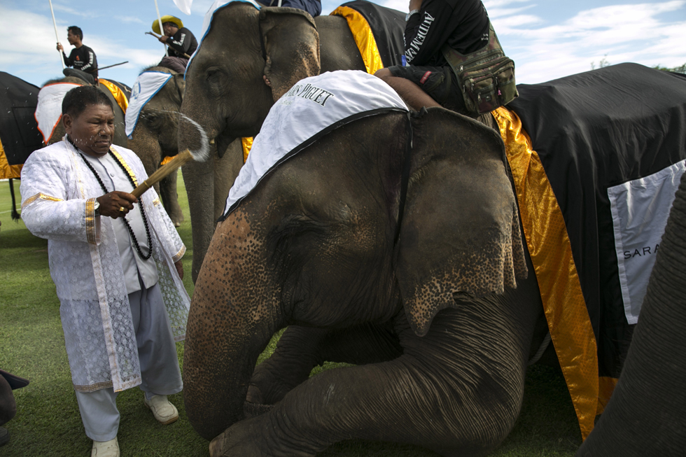 HUA HIN, THAILAND - AUGUST 29: A Brahman priest sprinkles holy water blessing the elephants before games begin during the first day of events at the King's Cup Elephant Polo tournament on August 29, 2013 in Hua Hin, Thailand. (Photo by Paula Bronstein/Getty Images)