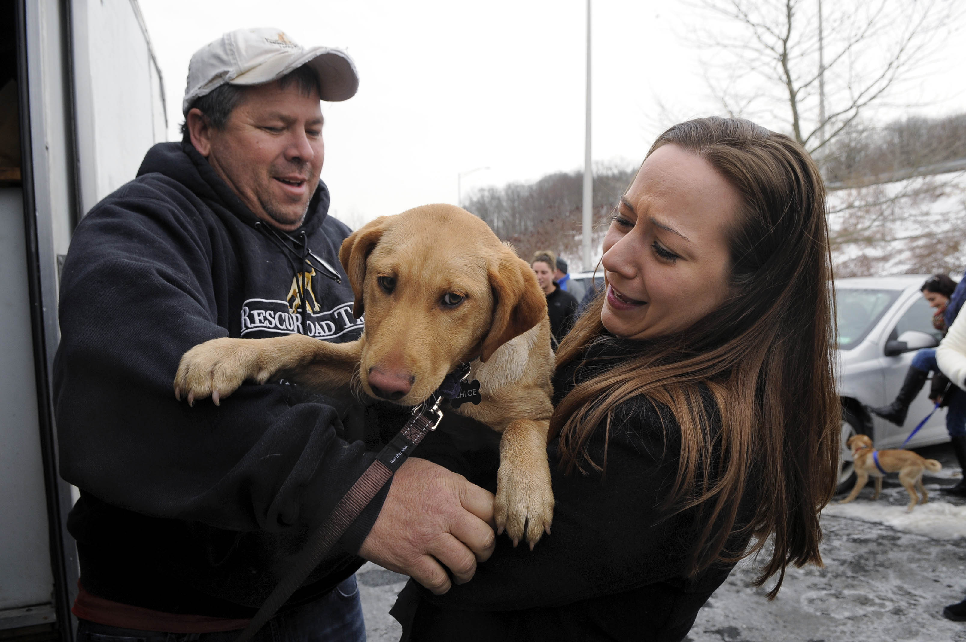 "DANBURY 01/25/14 Greg Mahle, of Zanesville, Ohio, (left) hands Chloe, a rescue dog, over to her new owner, Jessica Catropa, of Monroe, during a stop of Rescue Road Trips at a commuter parking lot off I-84 in Danbury Saturday.  ""We are so excited to get her and give her a safe, warm and loving home,"" said Catropa.  CLOE POISSON