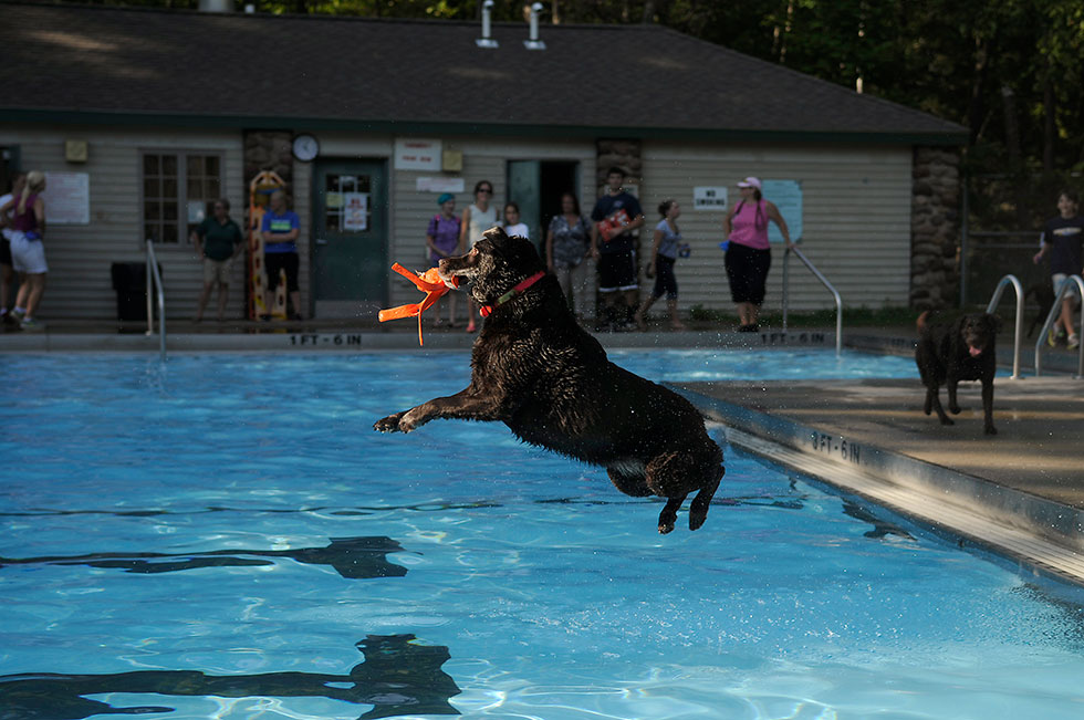 3rd-Annual-Pooch-Plunge-02