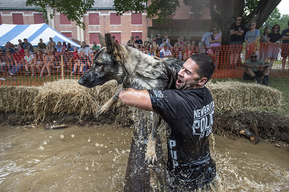 "07.25.2015 - Mansfield, Ct.  - Ray Oullette of the New Britain Police Department hoists his dog ""Pup"" over a log while slogging through a water-filled pit in The Connecticut K-9 Olympics. Now in it's 24th year, the competition includes K-9 units from local and state police departments and Department of Corrections. Money raised goes to the Hometown Foundation, ""CHIPS"" Program, and Shriners Children's Burn Centers. Photograph by Mark Mirko 