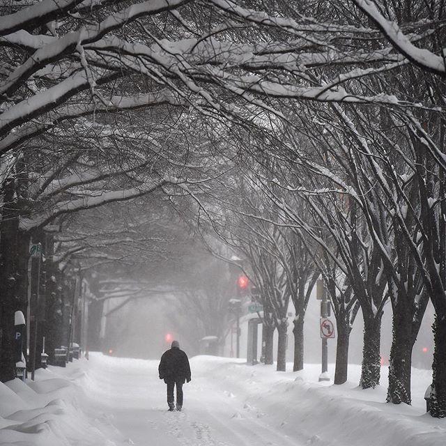A person makes their way along K Street NW on Saturday January 23, 2016 in Washington, DC. A large snow event was being predicted for Washington, DC area. MUST CREDIT: Washington Post photo by Matt McClain.
